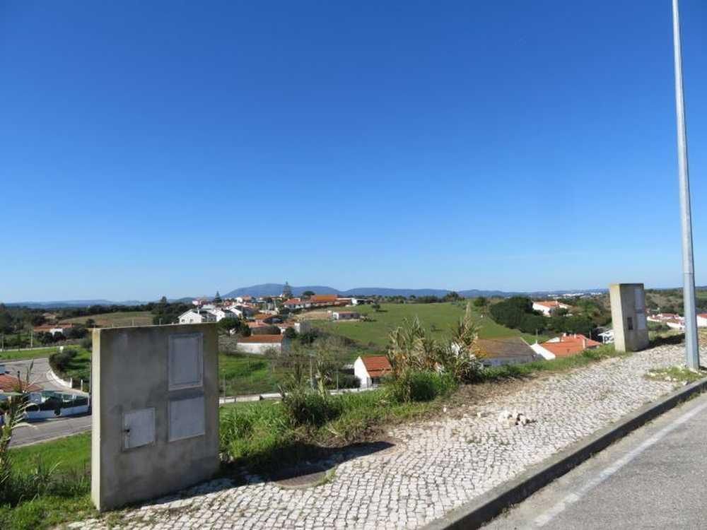 Vale do Paraiso Azambuja terrain picture 116795