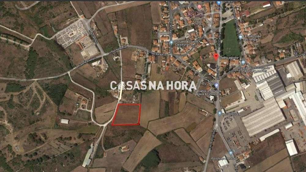 São João das Lampas Sintra terrain picture 117333