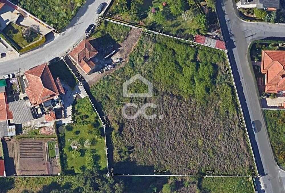 São Romão do Coronado Trofa terrain picture 120737