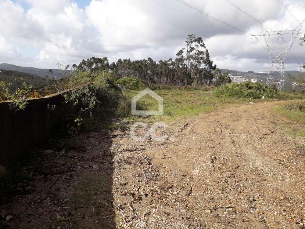 Cabanela Paredes De Coura terrain picture 127284