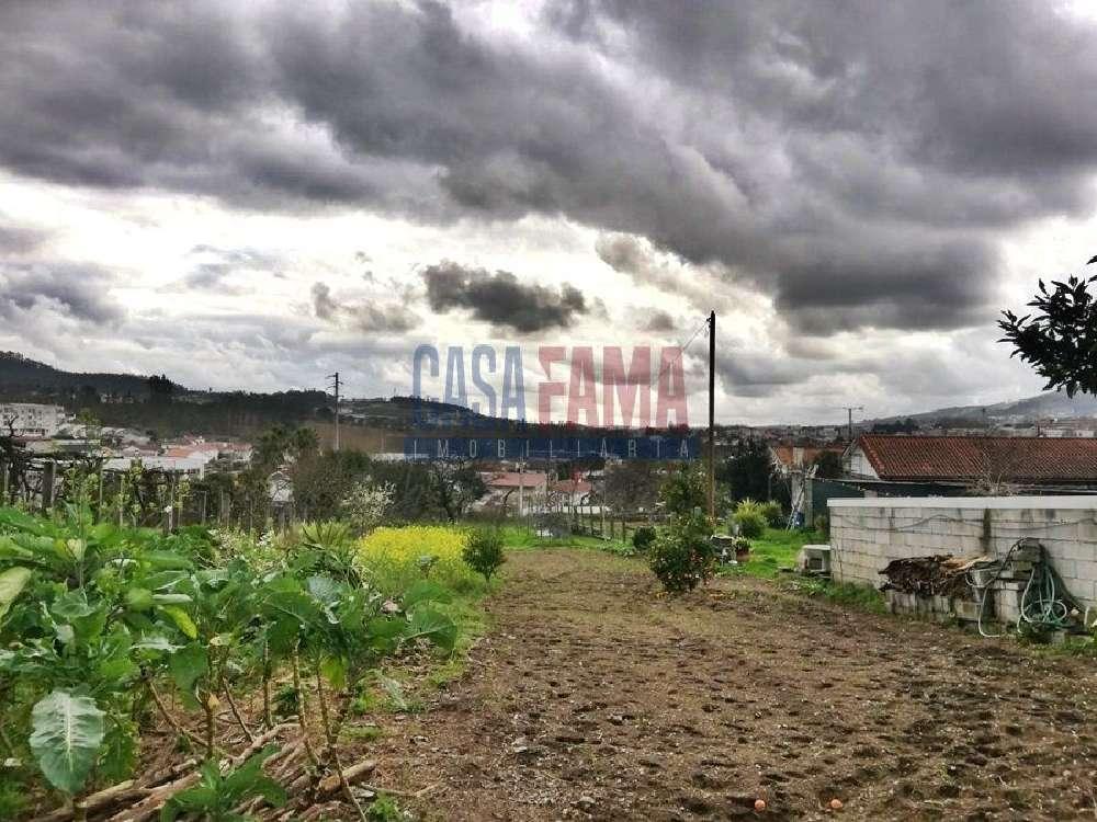 Joane Vila Nova De Famalicão terrain picture 121743