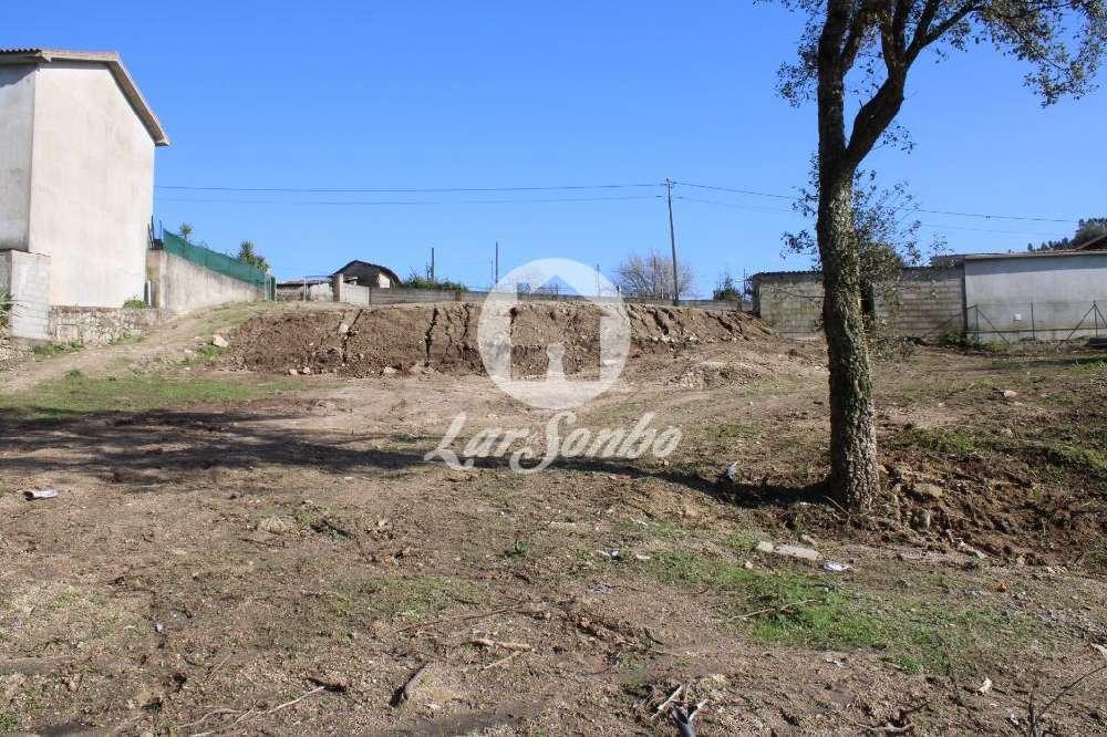 Cossourado Barcelos terrain picture 128140