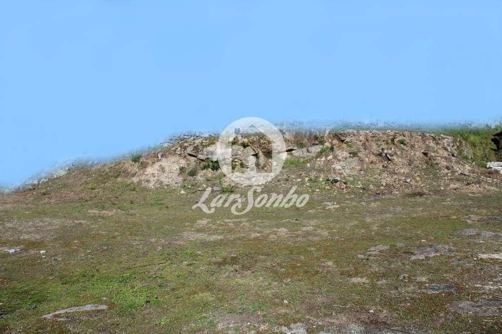 Tamel Barcelos terrain picture 128135