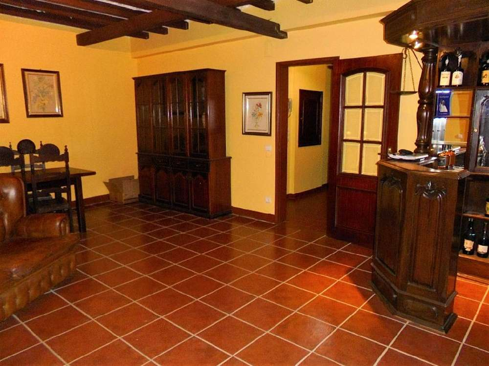 Castelo Branco Castelo Branco apartment picture 117054