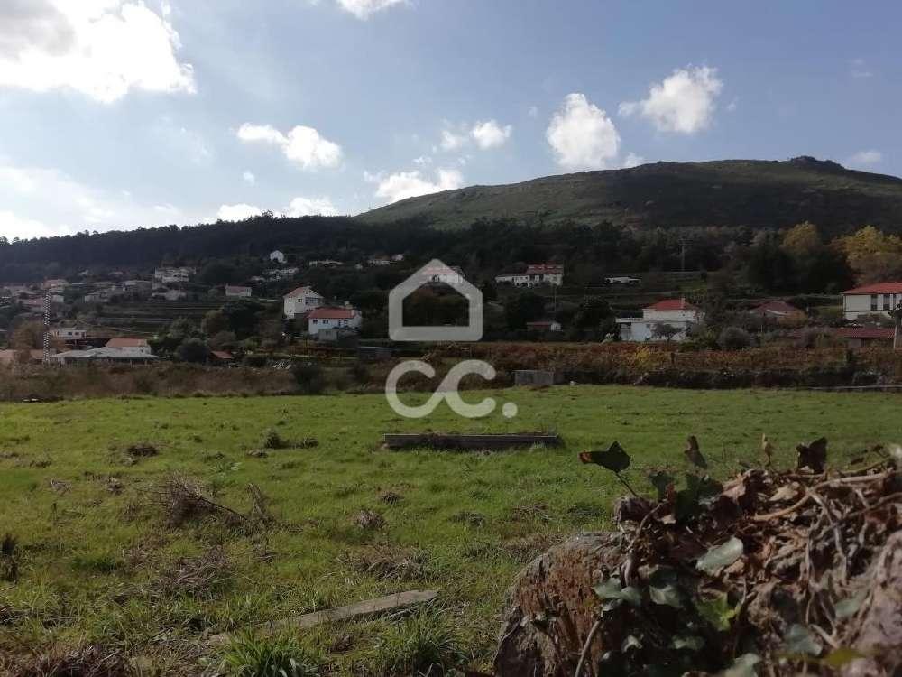 Candemil Vila Nova De Cerveira terrain picture 121138