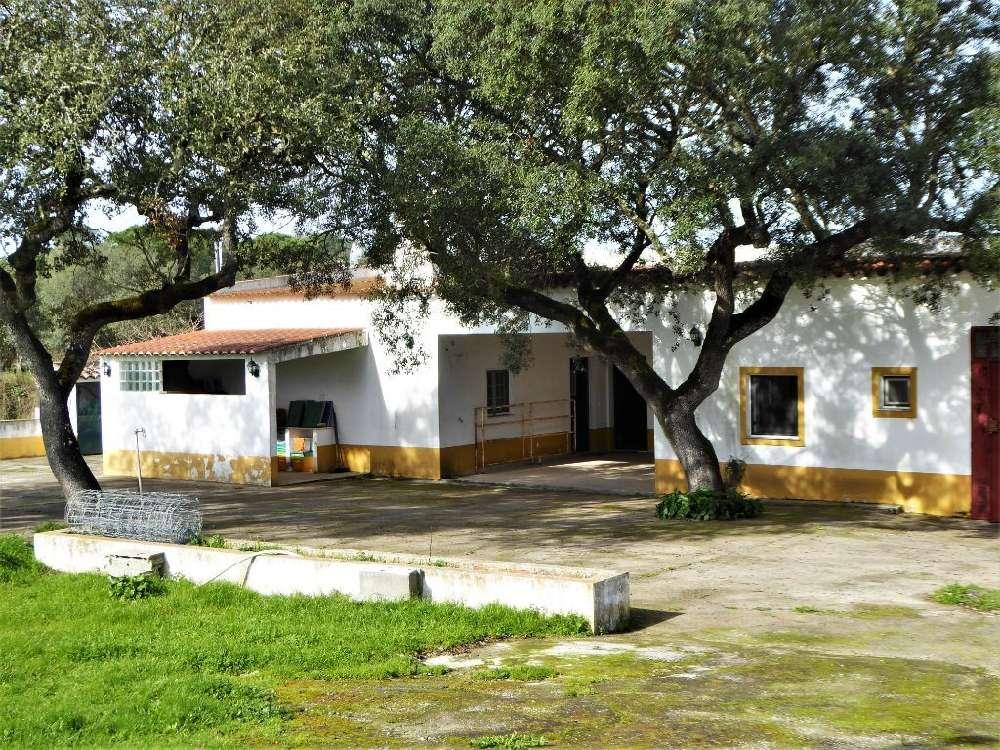 Foros de Vale de Figueira Montemor-O-Novo house picture 118239