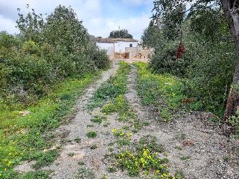 Estombar Lagoa (Algarve) terreno foto