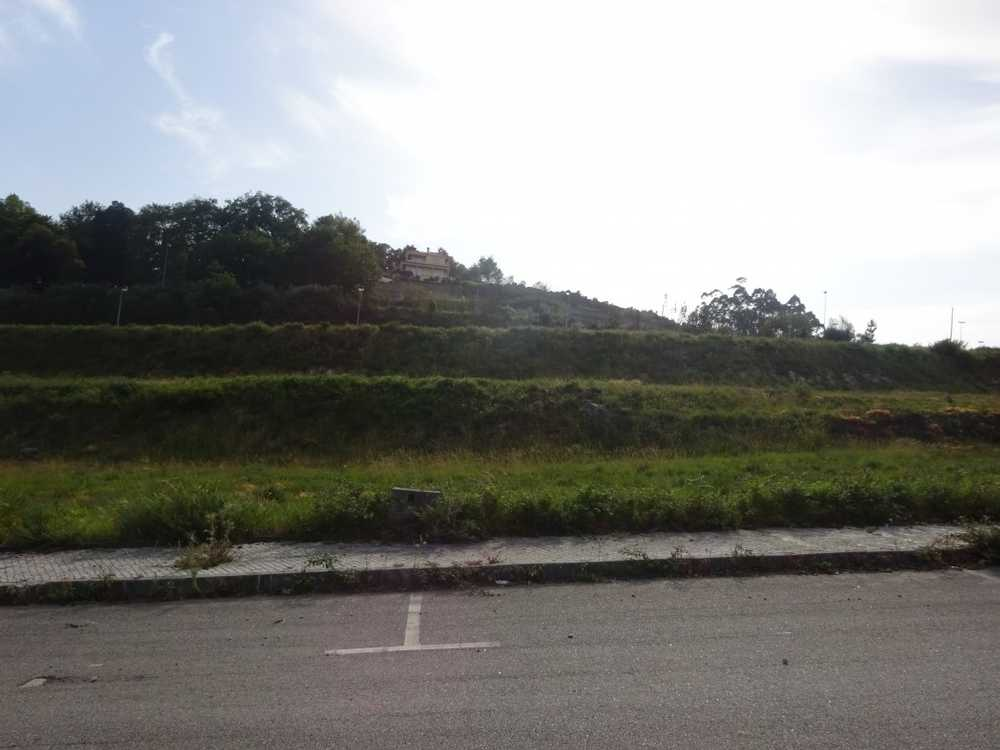 Calde Viseu terrain picture 129113