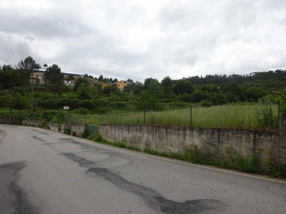 Várzea Viseu terrain picture 129137