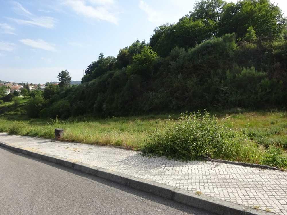 Corvos à Nogueira Viseu terrain picture 129125