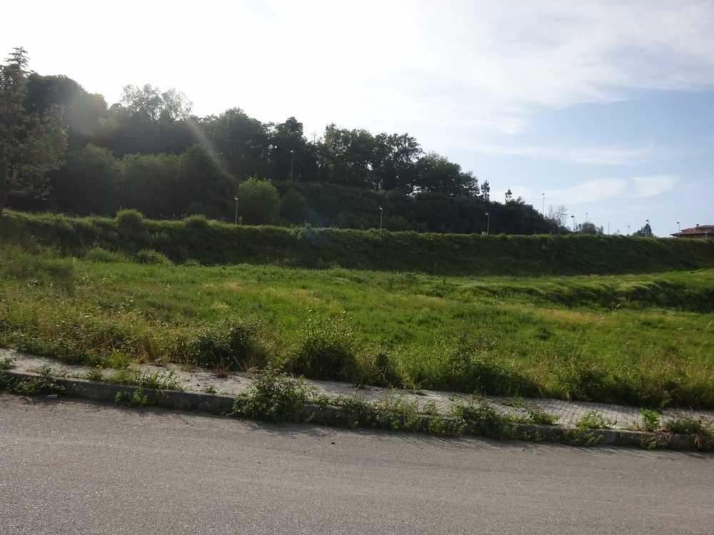Pinheiro Viseu terrain picture 129123