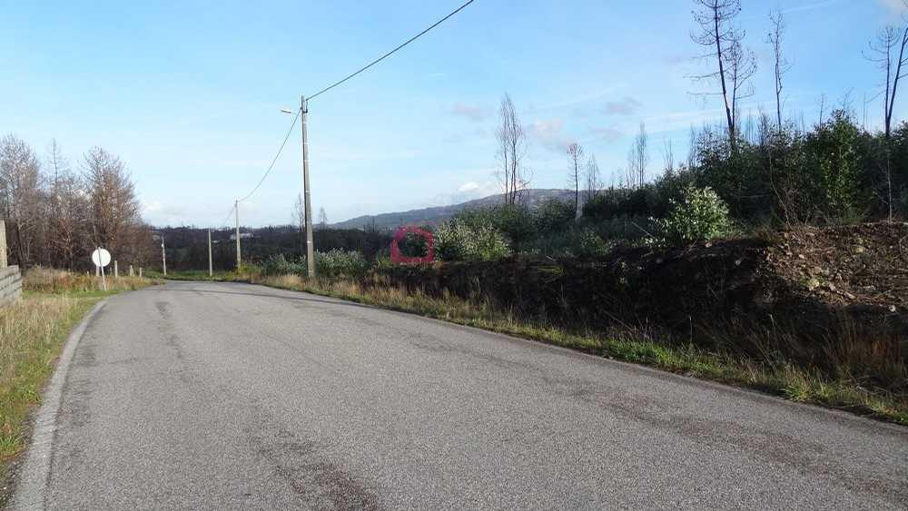 Pinheiro Viseu terrain picture 129153