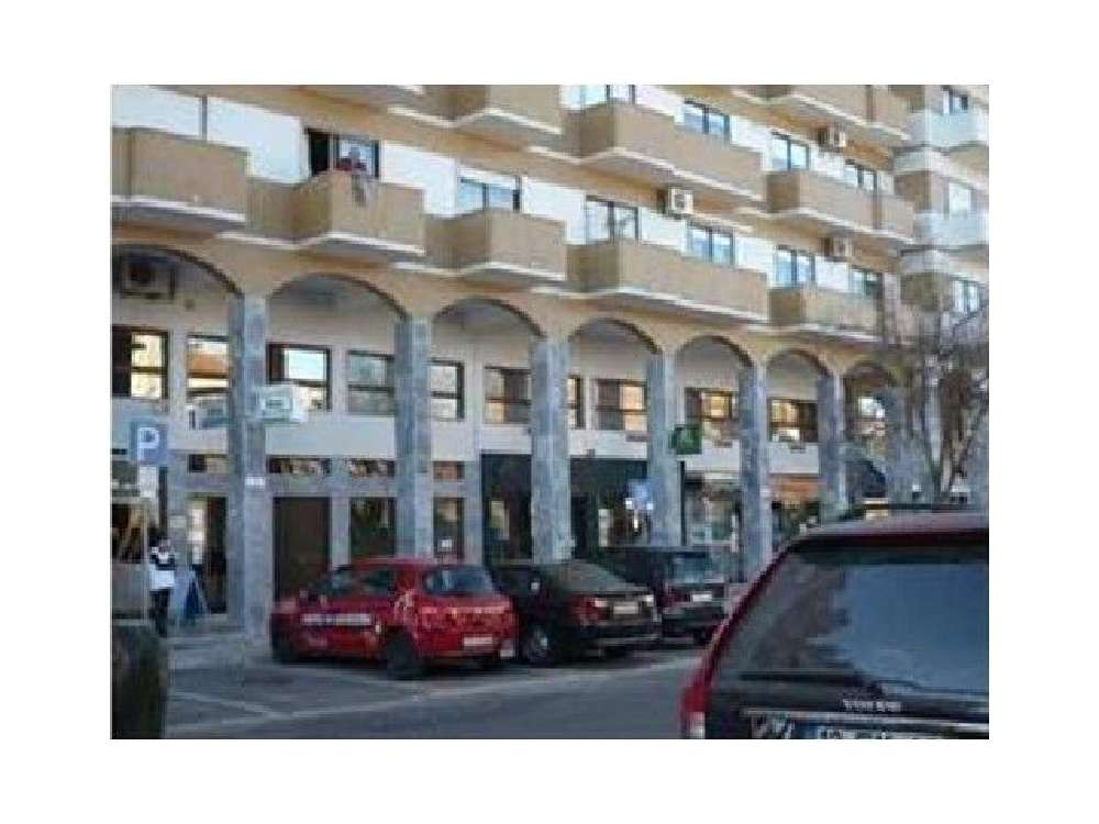 Santarém Santarém 屋 照片 #request.properties.id#