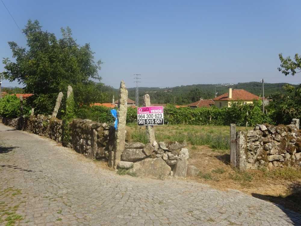 Carvalha Viseu terrain picture 129145