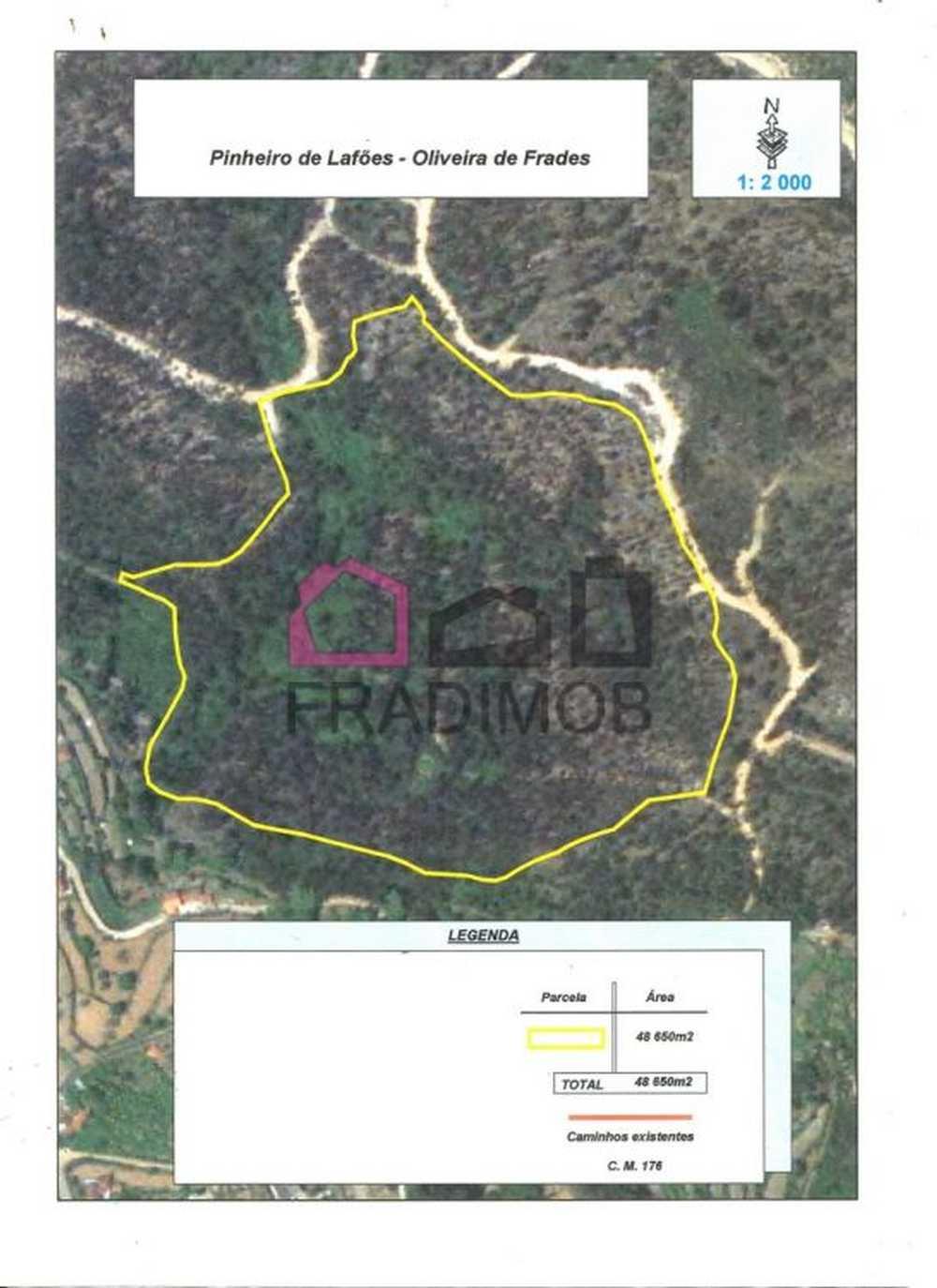 Pinheiro Viseu terrain picture 129080