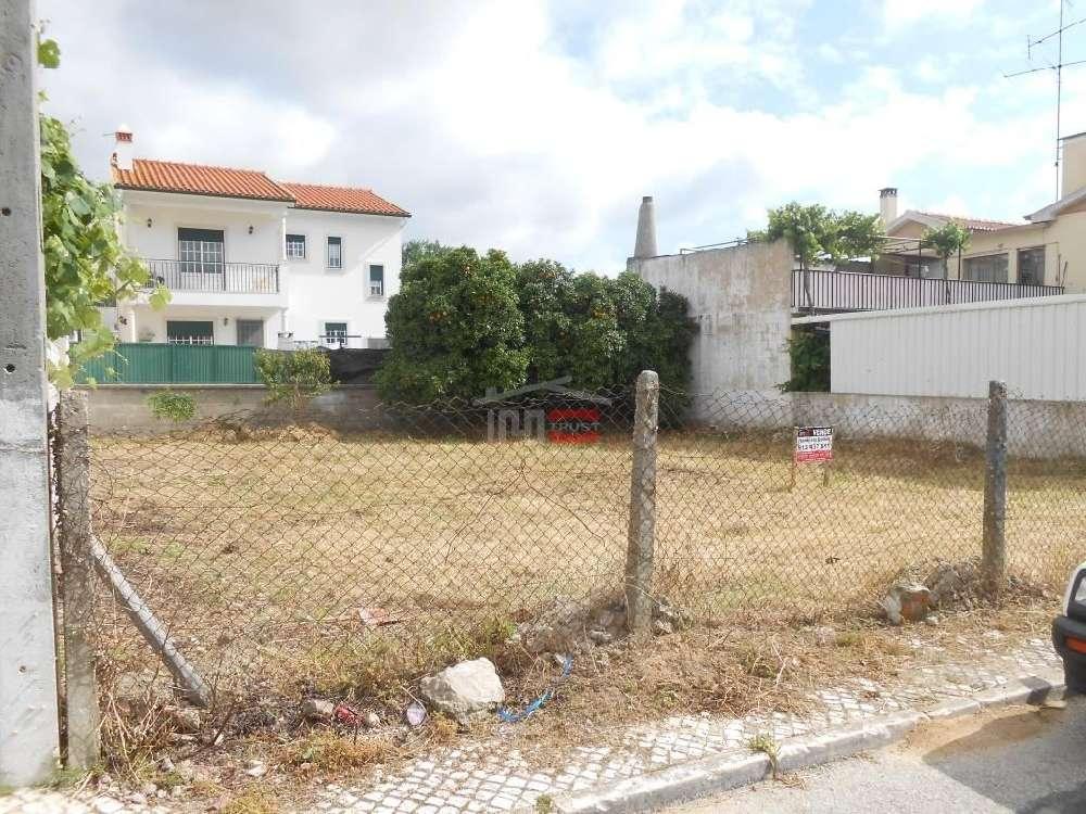 Riachos Torres Novas terreno foto #request.properties.id#