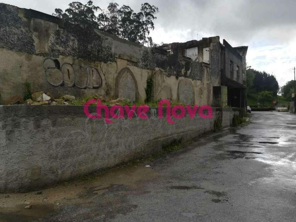 Maia Vila Do Porto terrain picture 133571