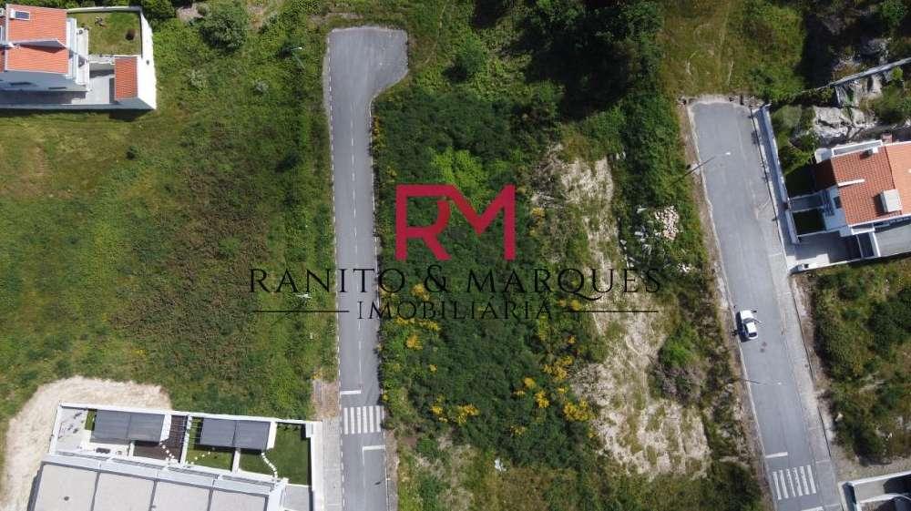 Boim Lousada terrain picture 135525