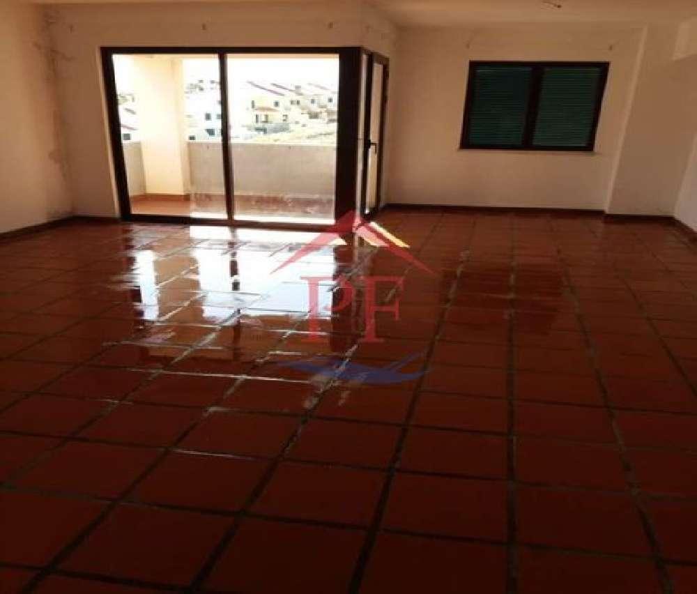 Ponta Delgada Santa Cruz Das Flores apartment picture 131625