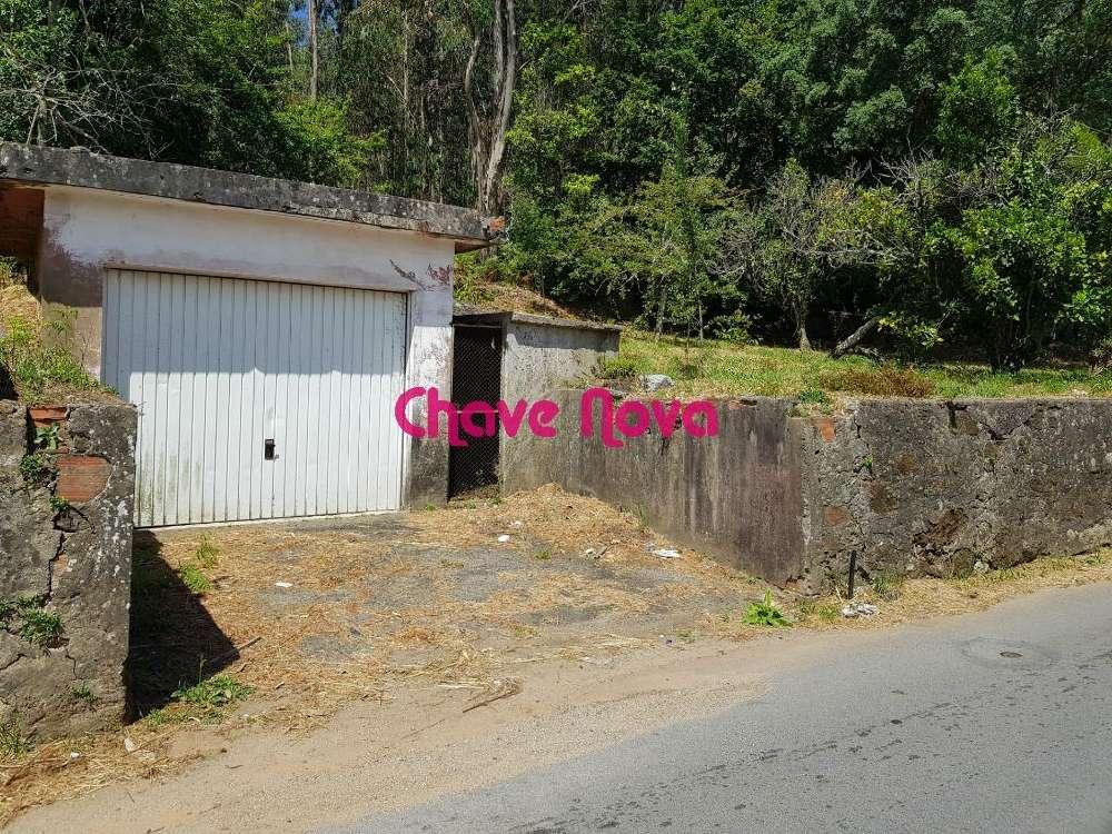 Guisande Santa Maria Da Feira terrain picture 133551