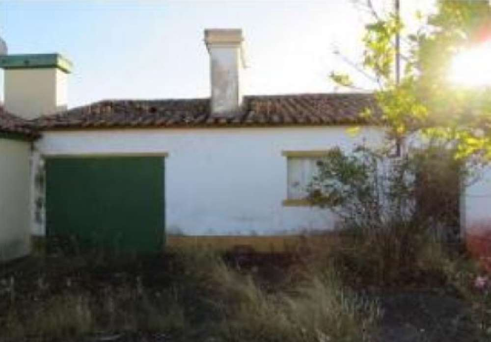 Esperança Arronches house picture 136031