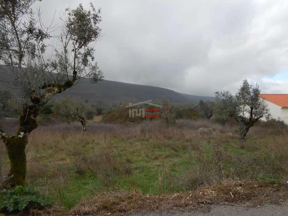 Alcaria Porto De Mós terreno foto #request.properties.id#