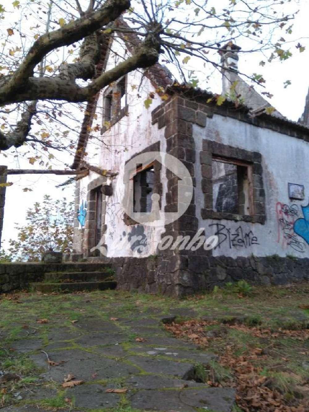 Ribeira Grande Ribeira Grande house picture 132663