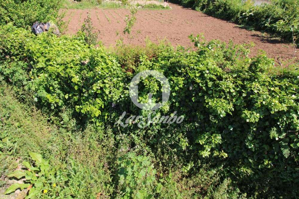 Rates Póvoa De Varzim terrain picture 132493