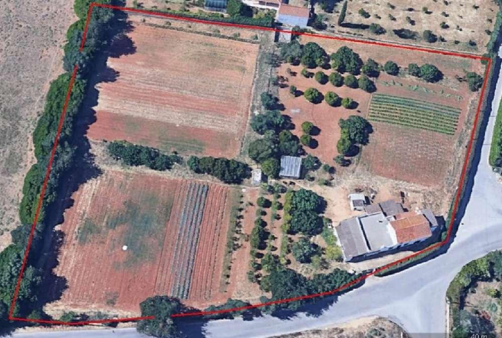 Ferragudo Lagoa (Algarve) villa picture 138021