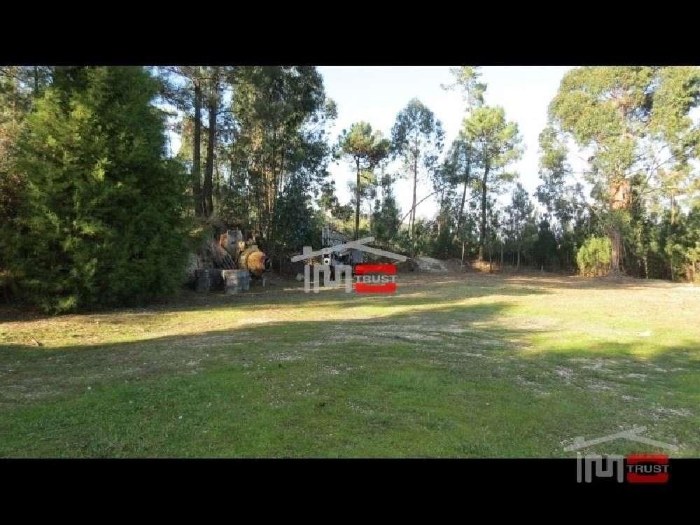 Urqueira Ourém terrain picture 136446