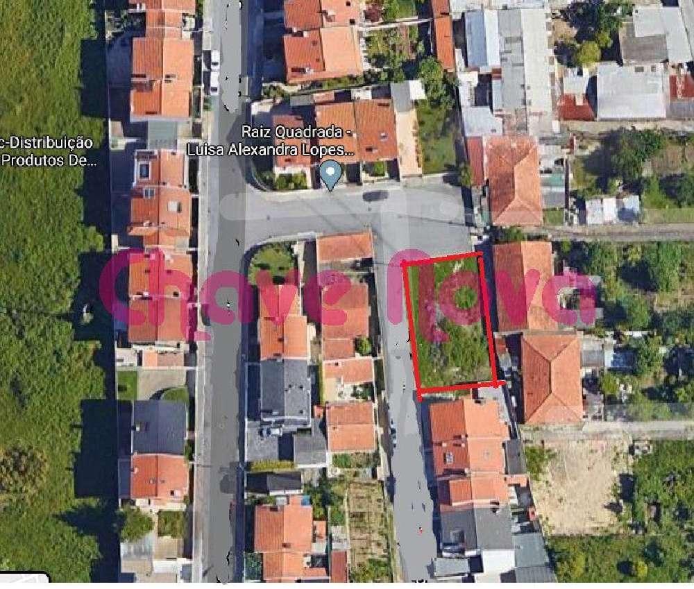 São Martinho Vila Nova De Gaia terrain picture 133337