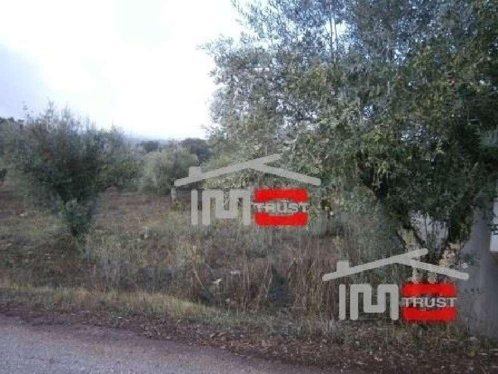 Matas Ourém terrain picture 136723