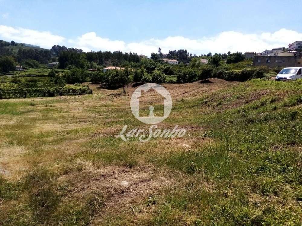 Lustosa Lousada terrain picture 132636