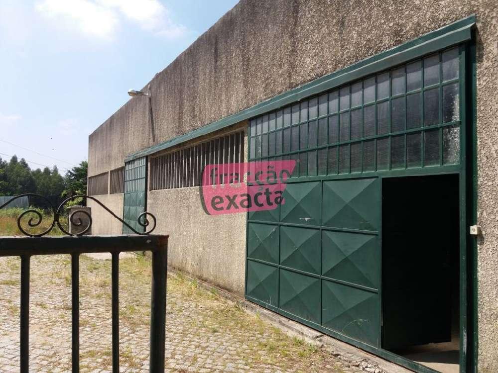Cucujães Oliveira De Azeméis house picture 134682