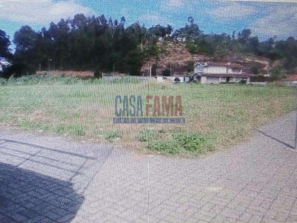 Ameal Coimbra terrain picture 135236