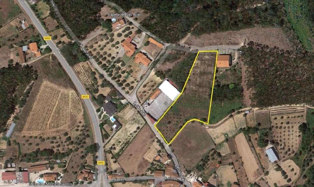 São Pedro de Alva Penacova terreno foto #request.properties.id#
