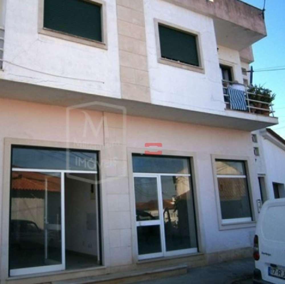 Riachos Torres Novas house picture 136499