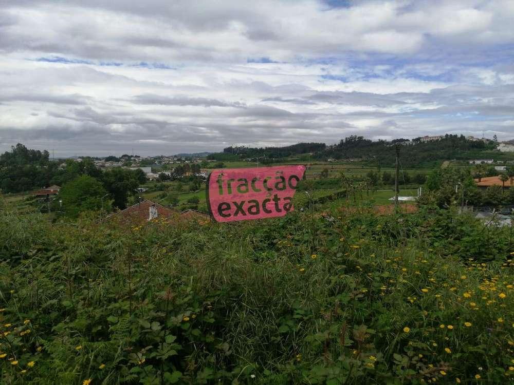Lodares Lousada terrain picture 136206