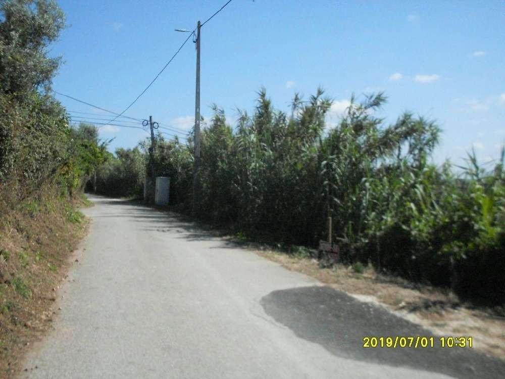 Vil de Matos Coimbra terreno foto #request.properties.id#