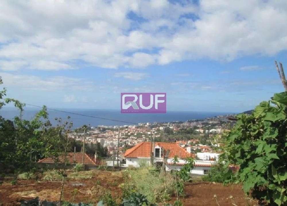 Funchal Funchal terrain picture 131451