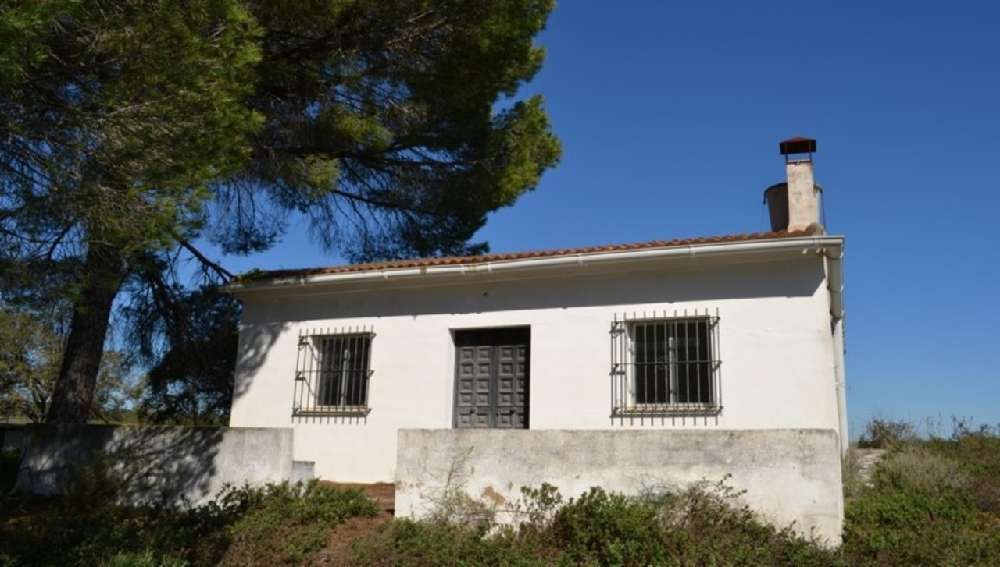 Ançã Cantanhede casa foto #request.properties.id#