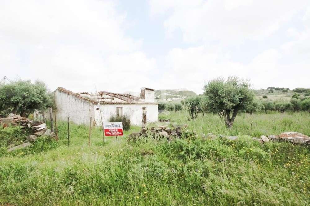 Pardais Vila Viçosa terrain picture 134054