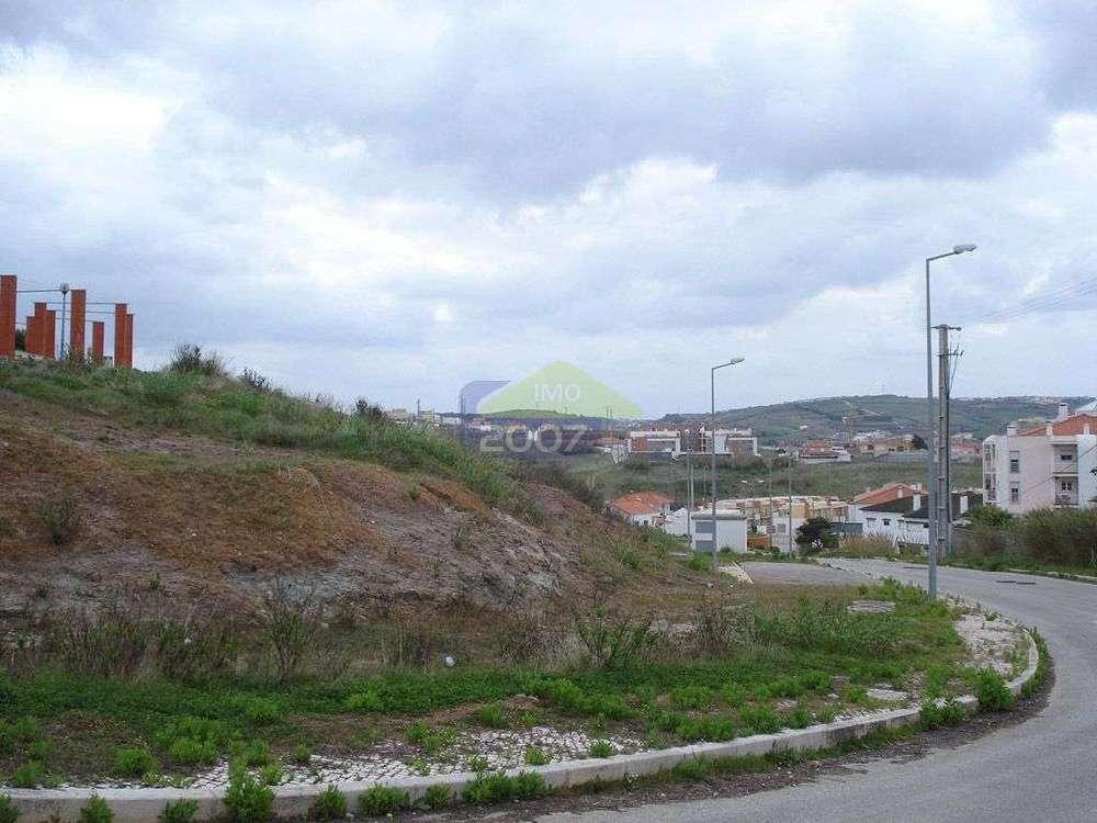 Atalaia Lourinhã terrain picture 133101