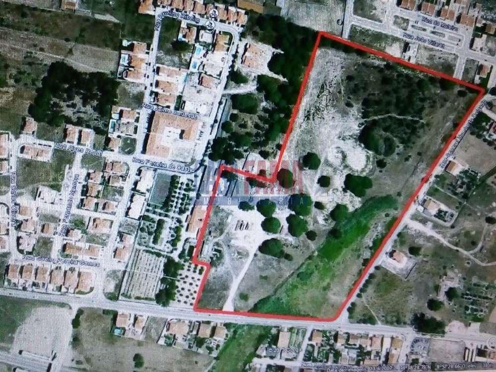 Moita Moita terrain picture 135202
