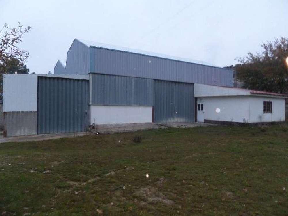 Santo Aleixo de Além-Tamega Ribeira De Pena Haus Bild 136314