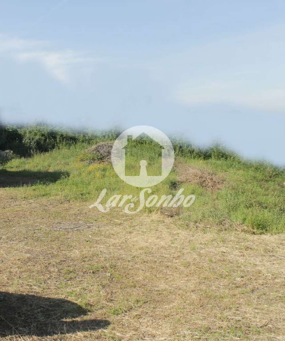 Viatodos Barcelos terrain picture 137152