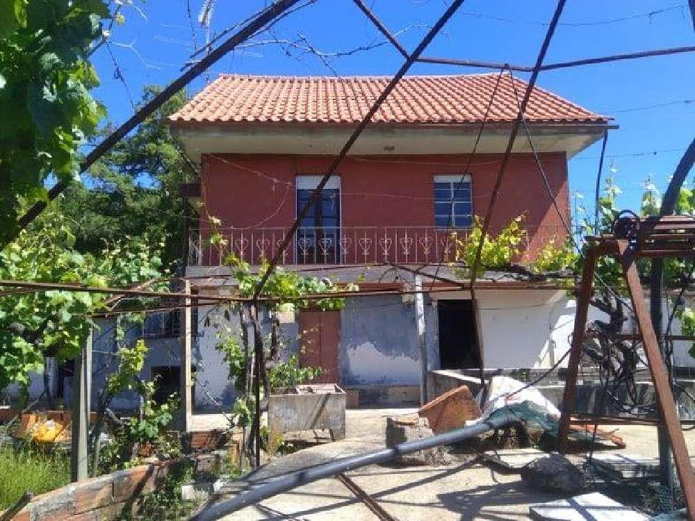 Cabeçudo Sertã Haus Bild 137338