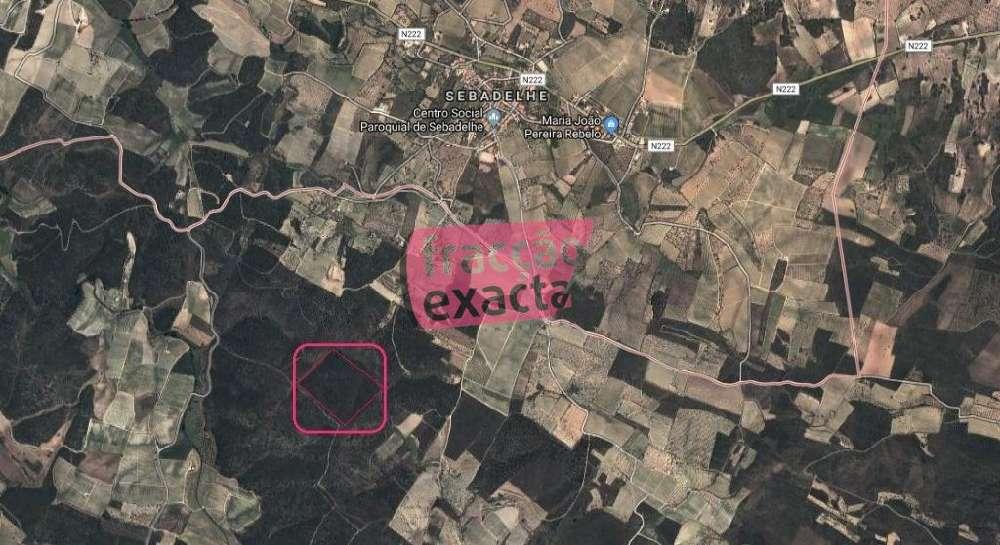 Cedovim Vila Nova De Foz Côa terreno foto #request.properties.id#