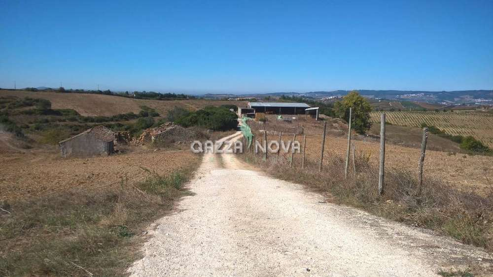 Ota Alenquer house picture 136159