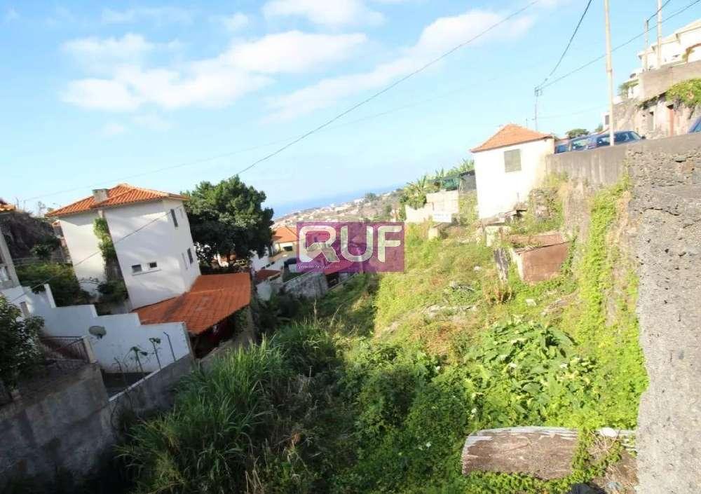 Funchal Funchal terrain picture 131452